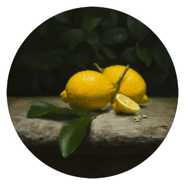 Lemons in Garden still life [Oil on panel 30cm done from live setup] 2016